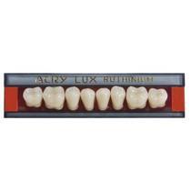 Dente Acrylux Posterior Inferior - Ruthinium