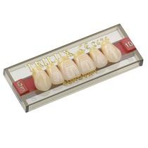 Dente Trilux Anterior Inferior - VIPI