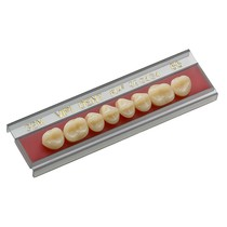Dente Vipi Dent Plus Posterior Inferior - VIPI
