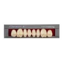Dente Chroma-4 Posterior Inferior - RUTHINIUM