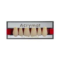 Dente Acrymat Anterior Superior - Ruthinium