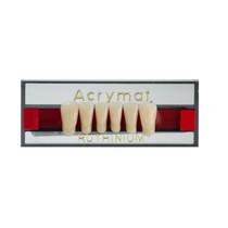 Dente Acrymat Anterior Inferior - Ruthinium