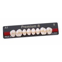 Dente Premium Posterior Inferior - Kulzer