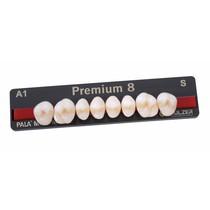 Dente Premium Posterior Superior - Kulzer