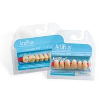 Dente Artiplus Anterior Superior - Dentsply Sirona