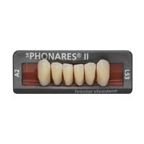 Dente SR Phonares II Anterior Inferior - Ivoclar Vivadent