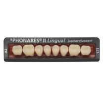 Dente SR Phonares II Lingual Posterior Inferior - Ivoclar Vivadent