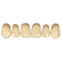 Dente Trisuper Superior Anterior - Blue Dent