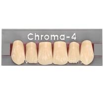 Dente Chroma-4 Anterior Superior - RUTHINIUM