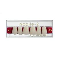 Dente Nobile-2 Anterior Superior - RUTHINIUM