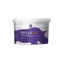Silicone para Laboratório Reflex Lab Denso - Yller